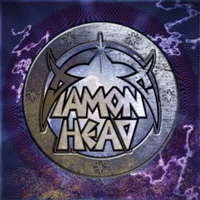 Diamond_head_cover